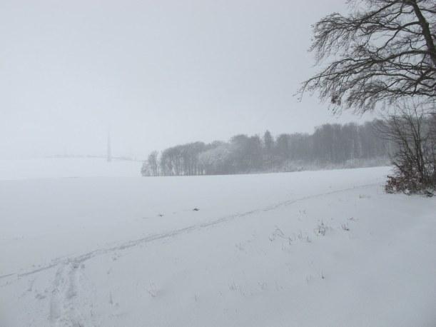 Panorama 2. Tag